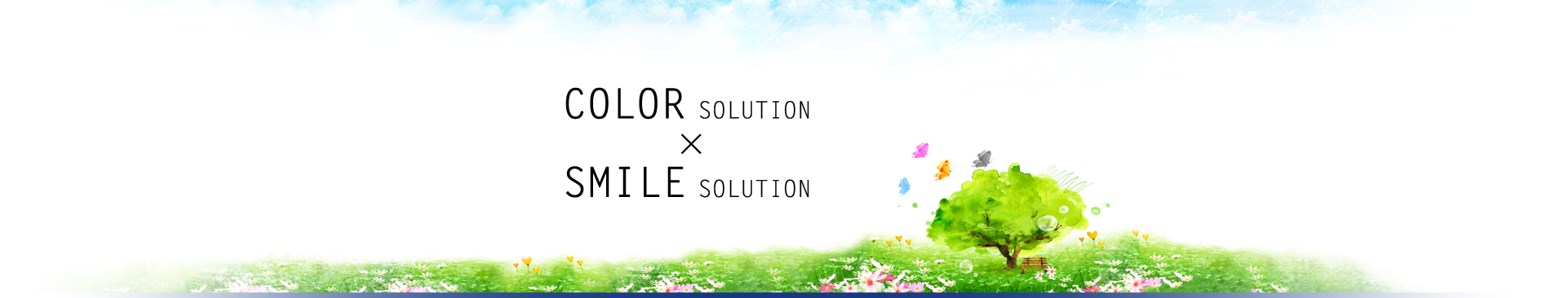 COLOR SOLUTION X SMILE SOLUTION